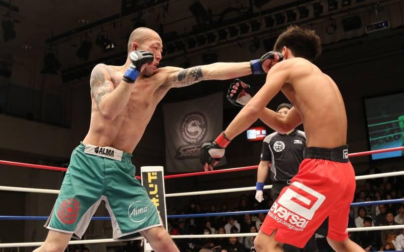 shorts de boxe durant un combat